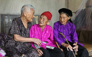 """Chuyện về 3 chị em ruột được ví như """"3 cây đại thụ"""" ở Nghệ An"""