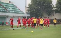 HLV Park Hang-seo chia sẻ mục đích thật sự trong đợt tập huấn tại Hàn Quốc