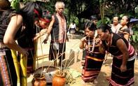 Tái hiện Lễ mừng lúa mới dân tộc Xơ Đăng tỉnh Kon Tum