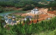UBND tỉnh Lâm Đồng yêu cầu xử lý vi phạm tại Khu du lịch quốc gia hồ Tuyền Lâm