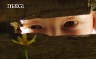 Công việc Quản lý dự án và CTV cho website của cộng đồng mê nhiếp ảnh Việt Nam