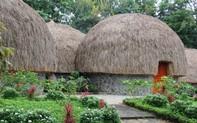 Độc đáo Khách sạn hình nấm tại Khu du lịch cụm thác Đ'ray Sáp, Đắk Nông