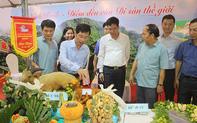 Khai mạc liên hoan du lịch làng nghề - ẩm thực Hà Nam lần thứ II năm 2019