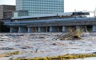 Hỗ trợ công dân Việt bị ảnh hưởng trong bão Hagibis tại Nhật Bản