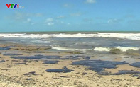 200 bãi biển tại Brazil xuất hiện vết dầu loang