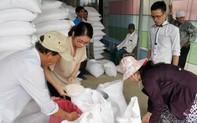 Bình Định được xuất cấp gạo hỗ trợ hộ gia đình có đất lúa không sản xuất do hạn hán