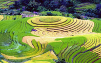 Giao lưu văn hóa và thúc đẩy du lịch Việt Nam tại Israel