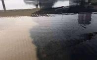 Một đoạn sông Hàn nước đen ngòm