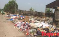 Cần kiến nghị xử lý hình sự đối với những cơ sở vi phạm nghiêm trọng trong lĩnh vực môi trường