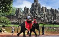 Sau làn sóng phẫn nộ từ dư luận, Campuchia cấm hẳn dịch vụ cưỡi voi ở đền Angkor Wat