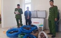 Quảng Bình: Bắt đối tượng vận chuyển, tàng trữ trái phép pháo và động vật hoang dã.