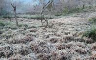 Chùm ảnh: Nhiệt độ giảm sâu, băng giá xuất hiện ở miền tây Nghệ An