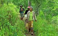 Vinh danh bốn Vườn Di sản ASEAN của Việt Nam