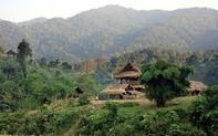 Khu Văn phòng Vườn Quốc gia Pù Mát được công nhận là điểm du lịch