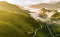 Tác phẩm của nhiếp ảnh gia Việt Nam được vinh danh trên National Geographic