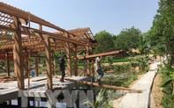 Quảng Nam: Tháo dỡ khu nghỉ dưỡng trái phép trong rừng phòng hộ Trà Lý