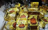 Video: Hành trình bắt, giữ 700kg ma túy tại Nghệ An