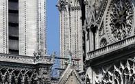 """Điều gì dẫn tới số phận kỳ lạ của đàn ong """"khủng"""" trong vụ hoả hoạn Nhà thờ Đức Bà Paris?"""