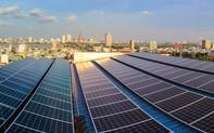 EVNCPC đã thanh toán hơn 922 triệu đồng cho 134 khách hàng bán điện mặt trời trên mái nhà