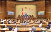 Trình dự thảo Luật Thư viện: Tổ chức, cá nhân nước ngoài được phép tham gia thành lập, tổ chức hoạt động thư viện