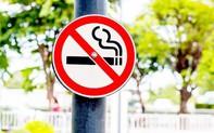 """Hà Nội triển khai mô hình """"Điểm du lịch không khói thuốc"""""""