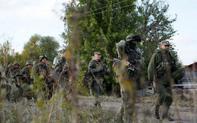 """Nga tung cành ô liu cho Tân Tổng thống Ukraine còn đang """"tiến thoái lưỡng nan"""""""
