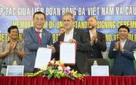 Bóng đá Việt Nam sẽ hợp tác đào tạo với đội bóng đứng thứ 6 của Bundesliga