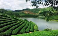 Nghệ An: Nâng cao sức cạnh tranh và sự phát triển bền vững của ngành du lịch