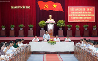Tiểu ban Kinh tế-Xã hội Đại hội Đảng XIII làm việc với các địa phương vùng ĐBSCL và TPHCM