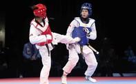Gần 300 vận động viên thi đấu tại Giải vô địch Taekwondo các câu lạc bộ tỉnh Gia Lai