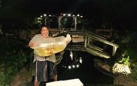 Nghệ sĩ Hoàng Mập ở nhà 1.600 m2, nuôi cá đặt tên giống nghệ sĩ