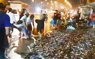 Trăm người giúp tài xế bắt lại 2,7 tấn cá sau tai nạn lật xe