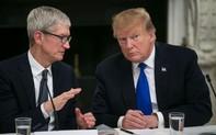 CEO Apple Tim Cook kể khó về Samsung với Tổng thống Mỹ Donald Trump