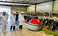 Vinamilk cùng Bộ Nông nghiệp & Phát triển Nông thôn xây dựng vùng chăn nuôi bò sữa tại Tây Ninh.