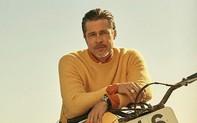 Brad Pitt làm gì khi không làm phim?