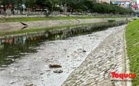 Sau 3 ngày Tết, sông Tô Lịch tràn ngập rác thải sinh hoạt