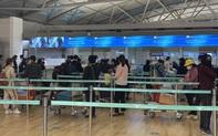 Đưa gần 450 công dân Việt Nam từ Hàn Quốc về nước