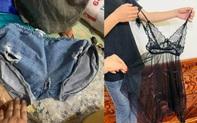 Ngán ngẩm cảnh quần áo rách… được đem đi từ thiện