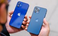 iPhone 12 vừa tung ra thị trường đã nhận được mưa lời khen từ người dùng quốc tế