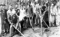 Chủ tịch Hồ Chí Minh và vấn đề bảo vệ môi trường sống