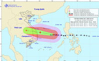 Bộ VHTTDL gửi Công điện về việc triển khai ứng phó khẩn cấp với bão số 9
