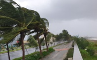 Bão số 9 đang hướng vào đất liền từ Đà Nẵng đến Phú Yên