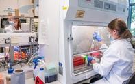 """""""Vaccine COVID-19 cho cả thế giới"""" bất ngờ đối mặt loạt nghi ngờ"""