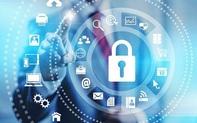Lần đầu tiên tại Việt Nam có bảo hiểm rủi ro trên không gian mạng