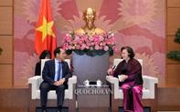 Chủ tịch Quốc hội Nguyễn Thị Kim Ngân tiếp Đại sứ Hàn Quốc Park Noh-Wan