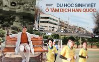 Du học sinh Việt tại tâm dịch Hàn Quốc: Nhiều người cấp tốc mua vé về nước, số khác ở lại vì sợ mang mầm bệnh về Việt Nam