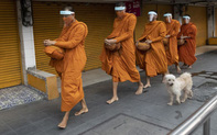 24h qua ảnh: Các nhà sư che kín mặt đi khất thực ở Thái Lan