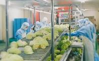 Covid-19 khiến 25 triệu người thất nghiệp