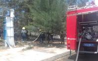 Quảng Trị: Kịp thời dập tắt đám cháy, cứu rừng phòng hộ giữa nắng nóng