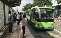 Tp.HCM đề xuất tăng trợ giá xe buýt lên hơn 1.300 tỉ đồng